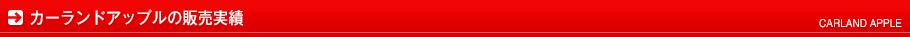 カーランドアップルの販売実績